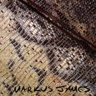 Markus James - Snakeskin Violin