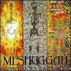 Meshuggah - Destroy Erase Improve (Reloaded 2008)