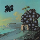 Moby Grape - Wow / Grape Jam (Reissued 1994)