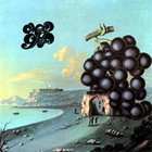 Moby Grape - Wow (Vinyl)