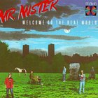 Mr. Mister - Welcome To The Real World(1)