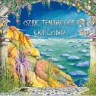 Ozric Tentacles - Erpland