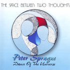 Peter Sprague - The Space Between Two Thoughts