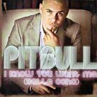 Pitbull - I Know You Want Me (Calle Ocho) (MCD)