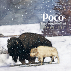 POCO - The Forgotten Trail (1969-1974) CD2