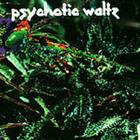 Psychotic Waltz - Mosquito