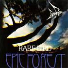 Rare Bird - Epic Forest