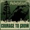 Rebelution - Courage To Grow