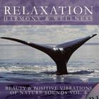Beauty & Positive Vibrations Of Nature Sounds Vol.6