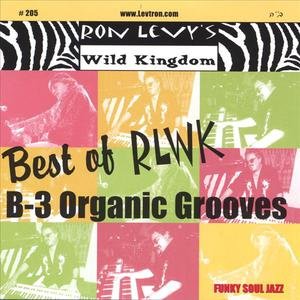 Best Of Rlwk - B-3 Organic Grooves