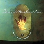 Sarah Mclachlan - Rarities, B-Sides & Other Stuff Vol.2