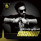 Shaggy - Intoxicaton