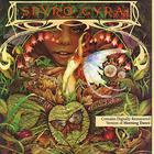 Spyro Gyra - MORNING DANCE (Vinyl)
