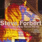 Steve Forbert - Rocking Horse Head