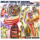 Steve Mednick - Ambling Toward The Unknown