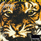 Survivor - Eye of the Tiger (Remastered 2009)