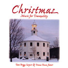 Tami Briggs - Christmas Music for Tranquility