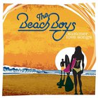 The Beach Boys - Summer Love Songs