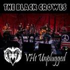 VH1 Unplugged