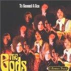 The Gods - To Samuel A Son