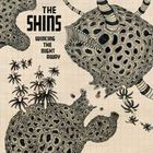 The Shins - Wincing the Night Away