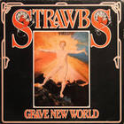 The Strawbs - Grave New World (Vinyl)