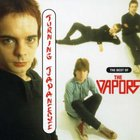 Turning Japanese: The Best of the Vapors
