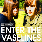 Enter The Vaselines CD1