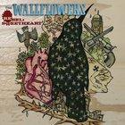 Wallflowers - Rebel, Sweetheart