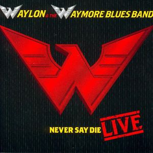 Never Say Die-Live