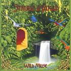Strunz & Farah - Wild Muse