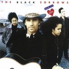 The Black Sorrows - Harley & Rose