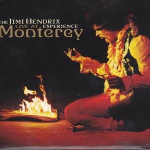 Live At Monterey Pop Festival (Vinyl)