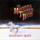 The Marshall Tucker Band - Southern Spirit
