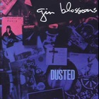 Gin Blossoms - Dusted