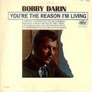 You're The Reason I'm Living (Vinyl)