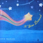 David Wahler - A Star Danced