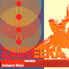 The Flaming Lips - Zaireeka CD4