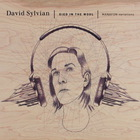 David Sylvian - Died In The Wool CD1