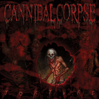 Cannibal Corpse - Torture (Deluxe Edition)