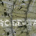 Rosetta - The Galilean Satellites CD1