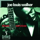 Joe Louis Walker - Blues Survivor