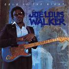 Joe Louis Walker - Cold Is The Night
