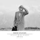 David Sylvian - A Victim Of Stars: 1982-2012 CD2
