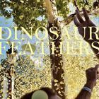 Dinosaur Feathers - Whistle Tips