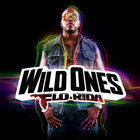 Flo Rida - Wild Ones (Deluxe Version)