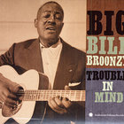 Big Bill Broonzy - Trouble In Mind