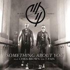 Something About You (Feat. Chris Brown & T-Pain) (CDS)