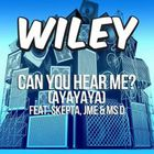 Can You Hear Me? (Ayayaya) (Feat. Skepta, Jme & Ms. D) (CDS)