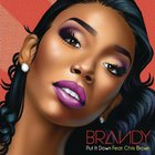 Brandy - Put It Down (Feat. Chris Brown) (CDS)